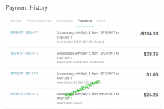 10421-Payment_history